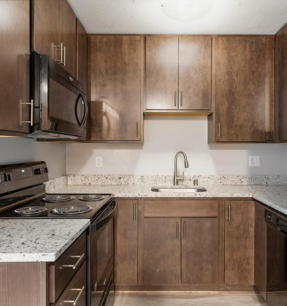 a ballantrae apartment kitchen